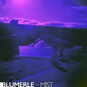 Avatar for Blumerle