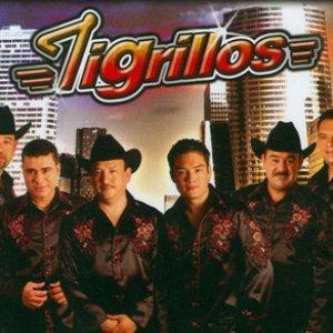 Avatar for Los Tigrillos