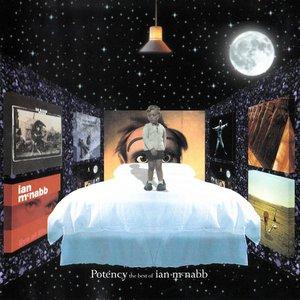 Potency The Best Of Ian McNabb