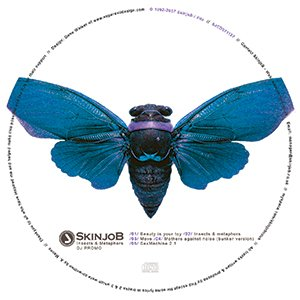 Insects & Metaphors DJ Promo