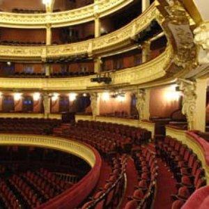 Avatar de Orchestre Du Theatre National de l'Opera-Comique