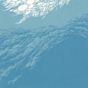 Image for 'Flood'