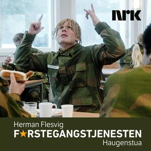 Herman Flesvig - Haugenstua