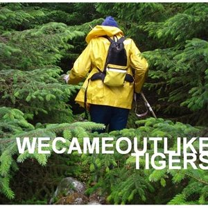 We Came Out Like Tigers
