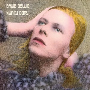 Image for 'Hunky Dory'