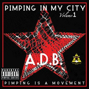 Image for 'Pimping in my City vol.1(Pimping is a Movement.) (11/12/2011 6:40:46 PM)'