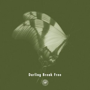 Darling Break Free
