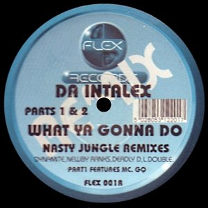 What Ya Gonna Do (Nasty Jungle Remixes)