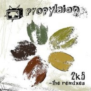 2k8 - the remixes