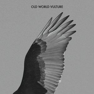 Old World Vulture