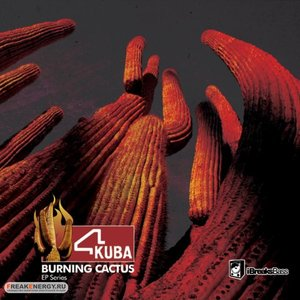 Burning cactus Part 1