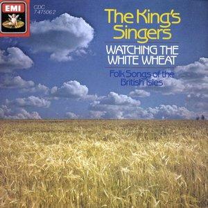 Watching the White Wheat