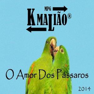 O Amor dos Pássaros - 2014
