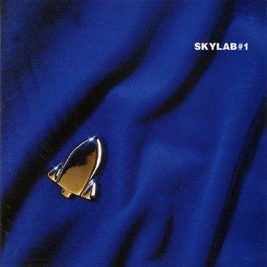 Skylab #1