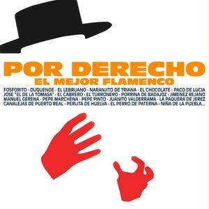 Por Derecho el Mejor Flamenco