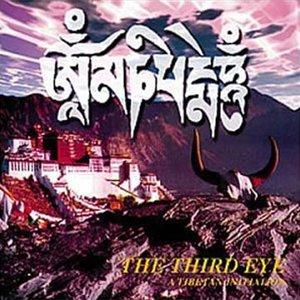 A Tibetan Initiation