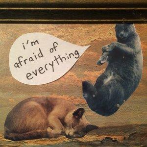 I'm Afraid of Everything