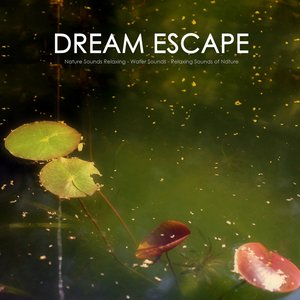 Green Escape - Water Sound, Natural Sounds and Relaxing Sounds of Nature