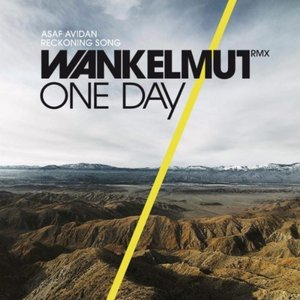One Day / Reckoning Song (Wankelmut Remix) [Radio Edit]