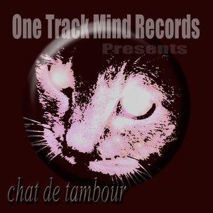 Chat De Tambour