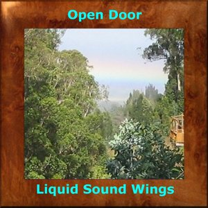 Avatar for Liquid Sound Wings