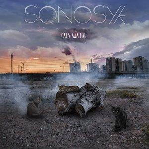 Avatar di Sonosyk