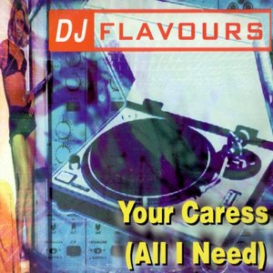 Avatar for DJ Flavours