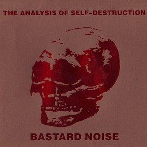 The Analysis Of Self-destruction