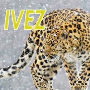Avatar for IVEZ