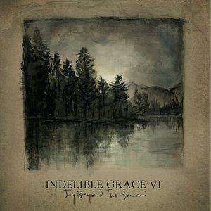Joy Beyond The Sorrow: Indelible Grace VI