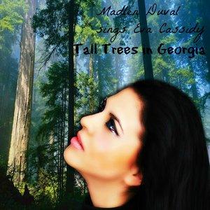 Tall Trees In Georgia