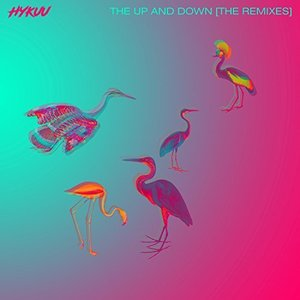 The Up and Down (The Remixes)
