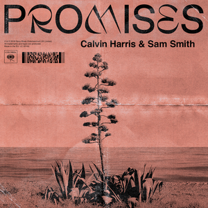 Promises (with Sam Smith)