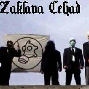 Avatar for Zaklana Čeljad