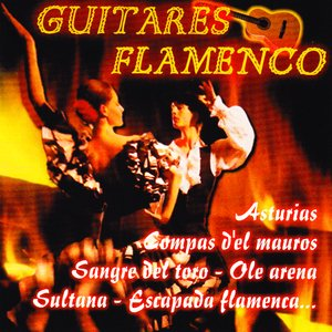 Guitares Flamenco