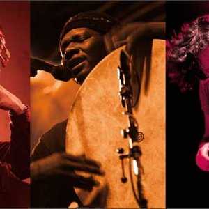 Immagine per 'Raoul Björkenheim / William Parker / Hamid Drake'
