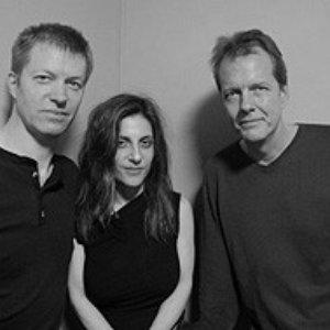 Nels Cline, Andrea Parkins & Tom Rainey 的头像