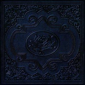 Cold Roses (International Version)