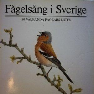 Fågelsång i Sverige (90 välkända fåglars läten)