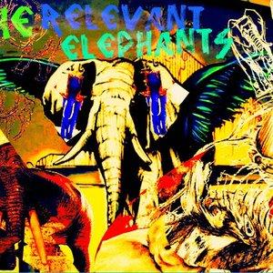 The Relevant Elephants