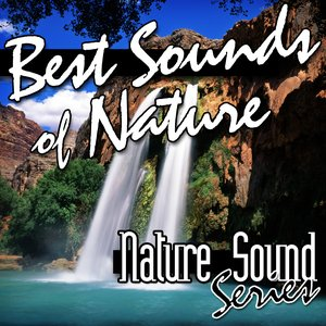Best Sounds of Nature