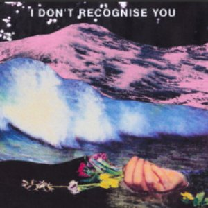 I Don't Recognise You