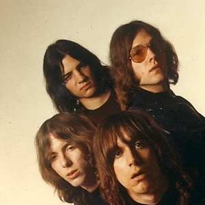 Avatar di The Stooges