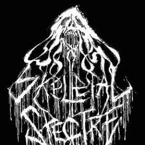 Avatar for Skeletal Spectre