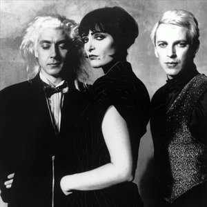 Аватар для Siouxsie and the Banshees