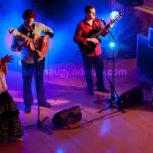 Avatar de Gypsy Flamenco Masters