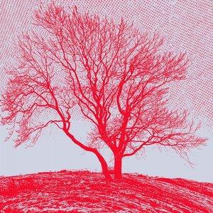 Baum EP