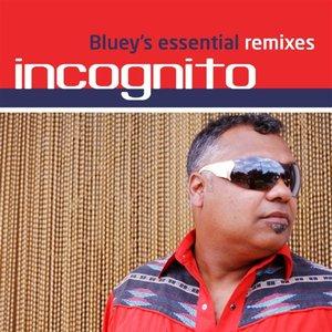 Bluey's Essential Remixes