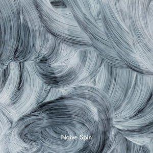 Naive Spin