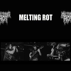 Avatar for Melting Rot